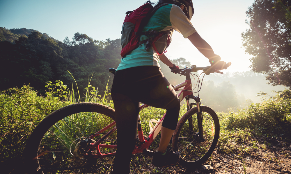 Fahrrad fahren Spreewald